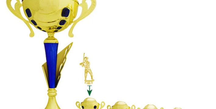 Trofeo de Música