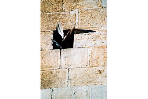 Israel_15.jpg