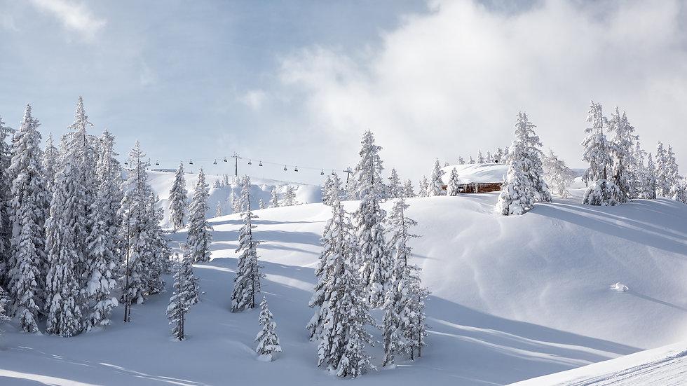 Skifahren Saalbach Apartment