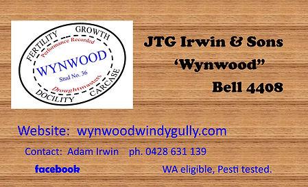 Wynwood roma.jpg