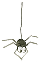 13-spider.png