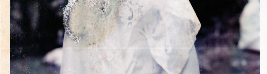 Persephone, 2003-2019
