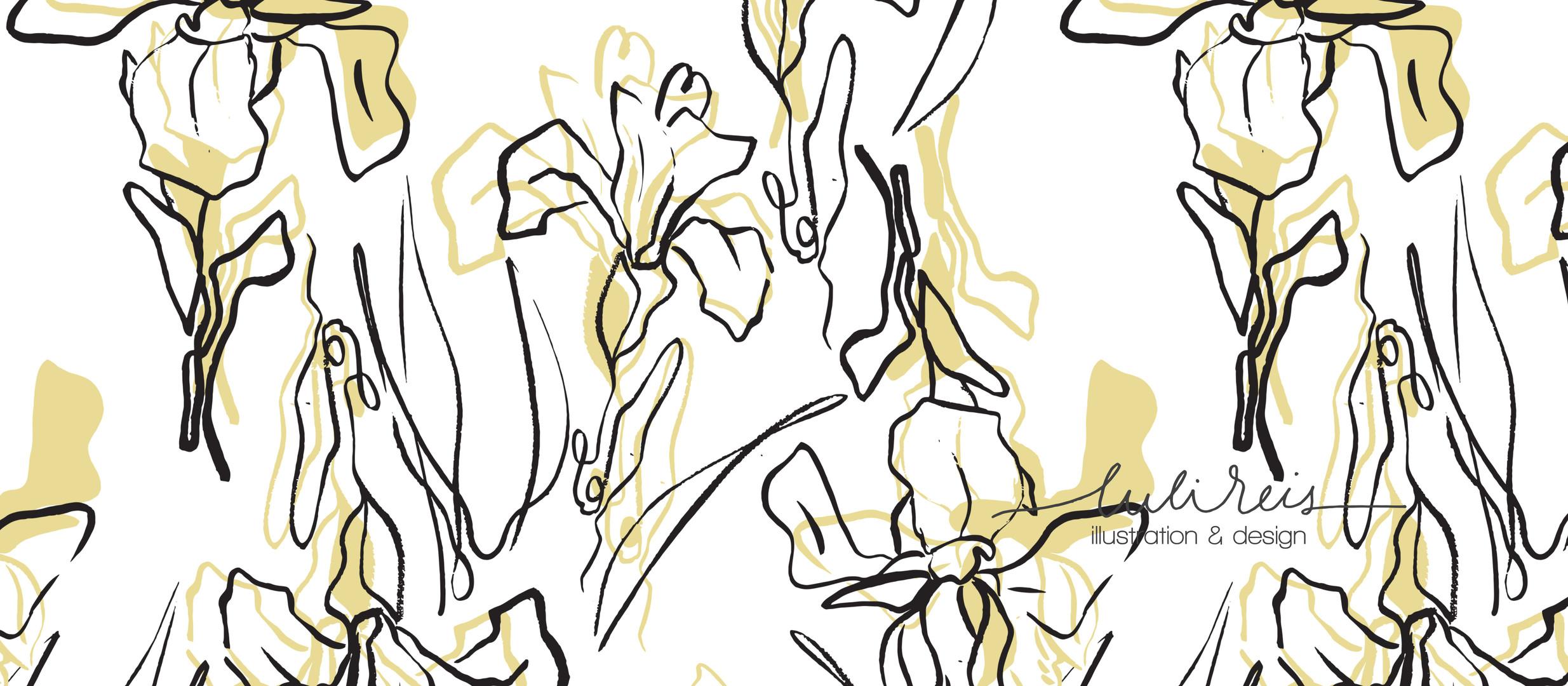 Íris - variação de cor