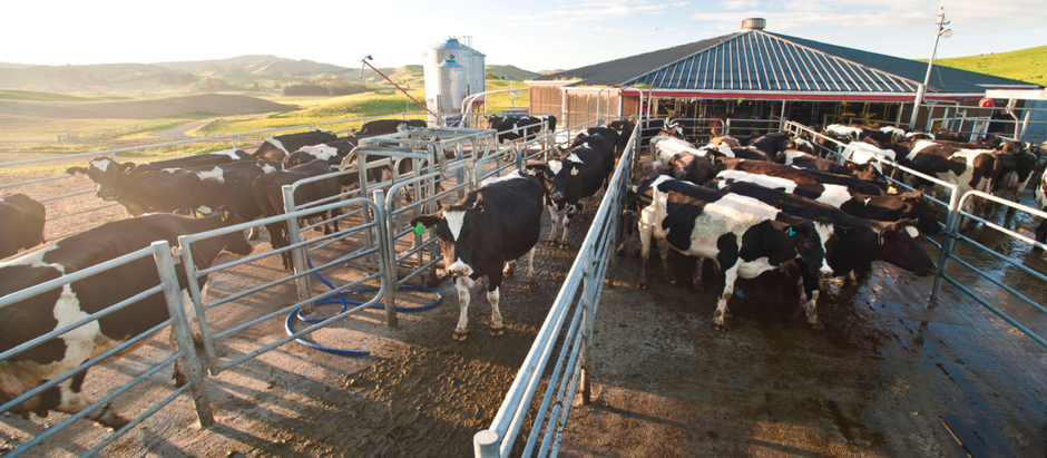 On-farm biosecurity planning