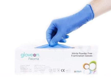 Glove On Paloma.jpg