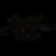 logo blacktest.png