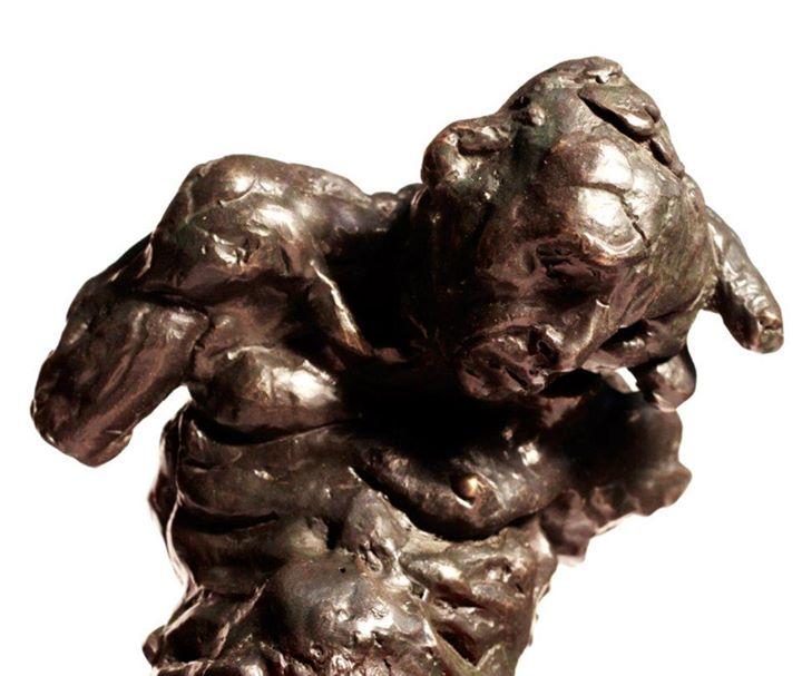 Minotauro 8 (foto 2)____bronze__2012