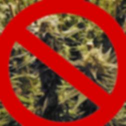 Medical Marijuana and Firearms in Ohio