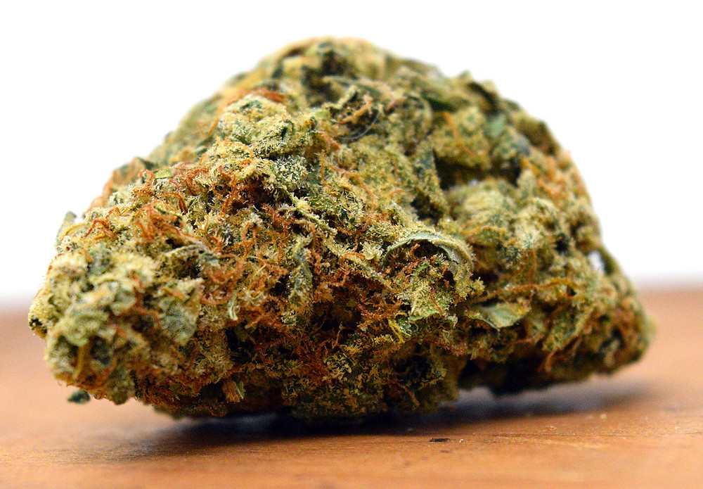 Marijuana Nug of the Strain Grapefruit Sour D