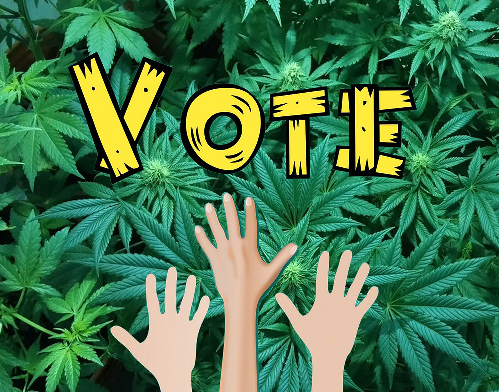 Animated Hands Reaching for the Word Vote with Marijuana Plants as Background