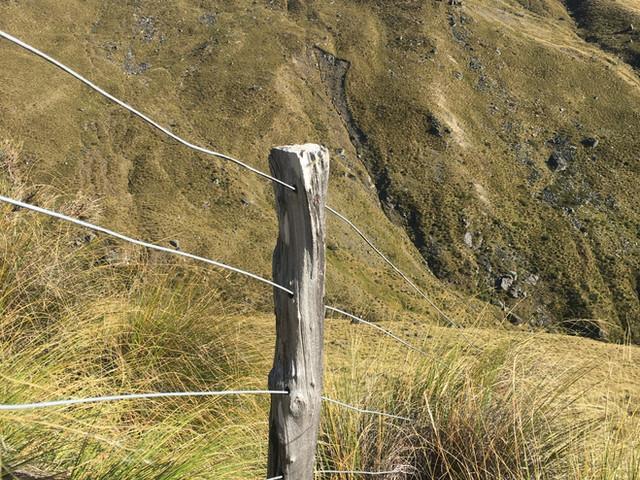 Rustic Rural Fencing Otago
