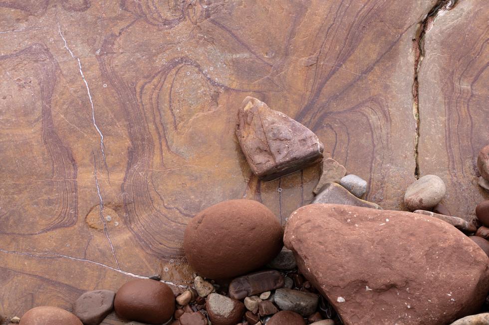 Fossil Triptych.jpg
