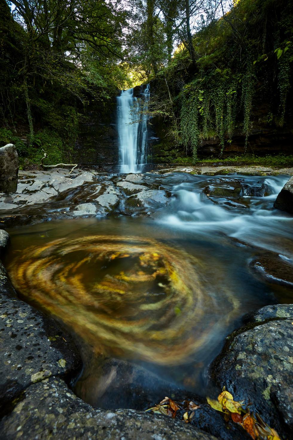 waterfall & leaves.jpg