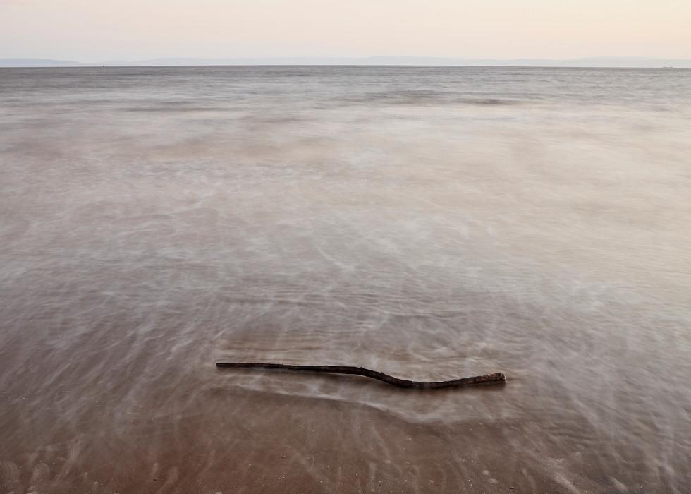 driftwood 1.jpg
