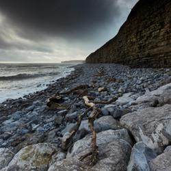 Lanwit Major driftwood