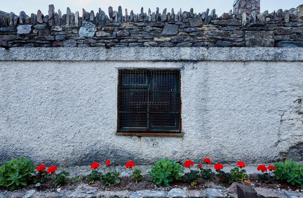 The Window 1.jpg
