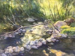 Sunlight on creek