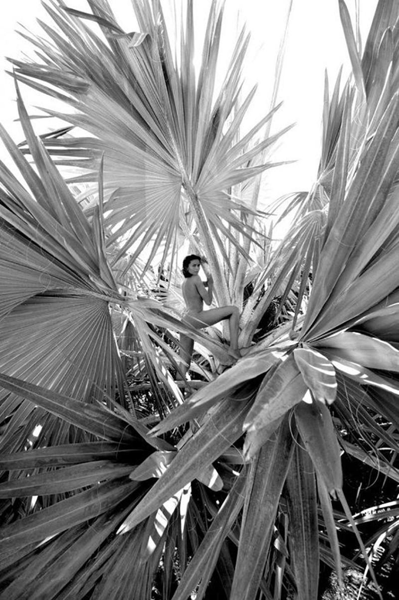 Kim Bismarchia, St Barth, Jean-Philippe Piter, nude portrait, st barth, black and white photography