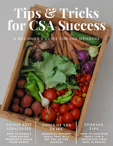 CSA Tips and Tricks cover picture.png