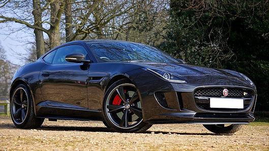 jaguar-1256547_960_720.jpg