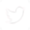 twitter-logo-White PNG.png