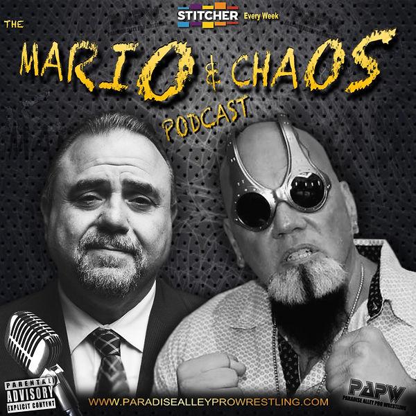 Mario & Chaos Banner 3.jpg