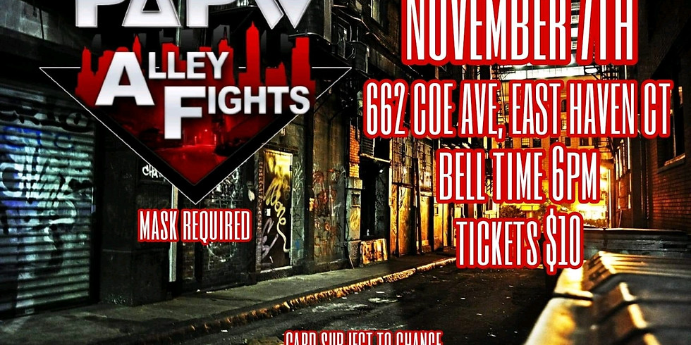 ALLEY FIGHTS
