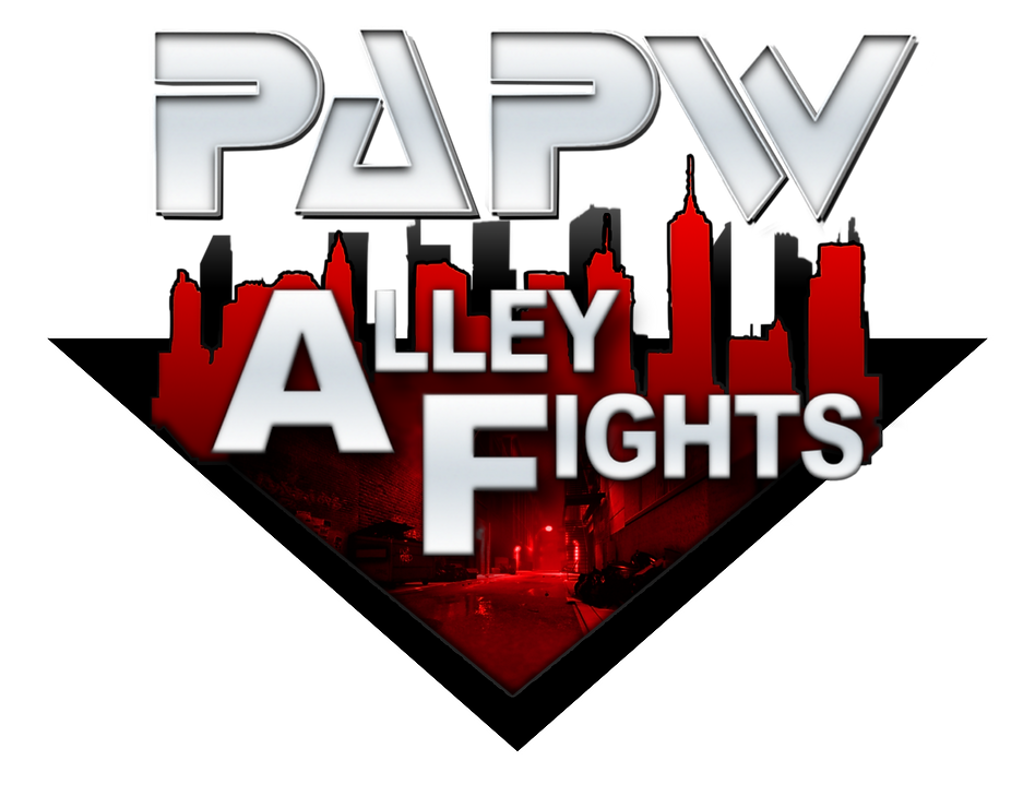 Alley Fights Logo 3 Shirt.png