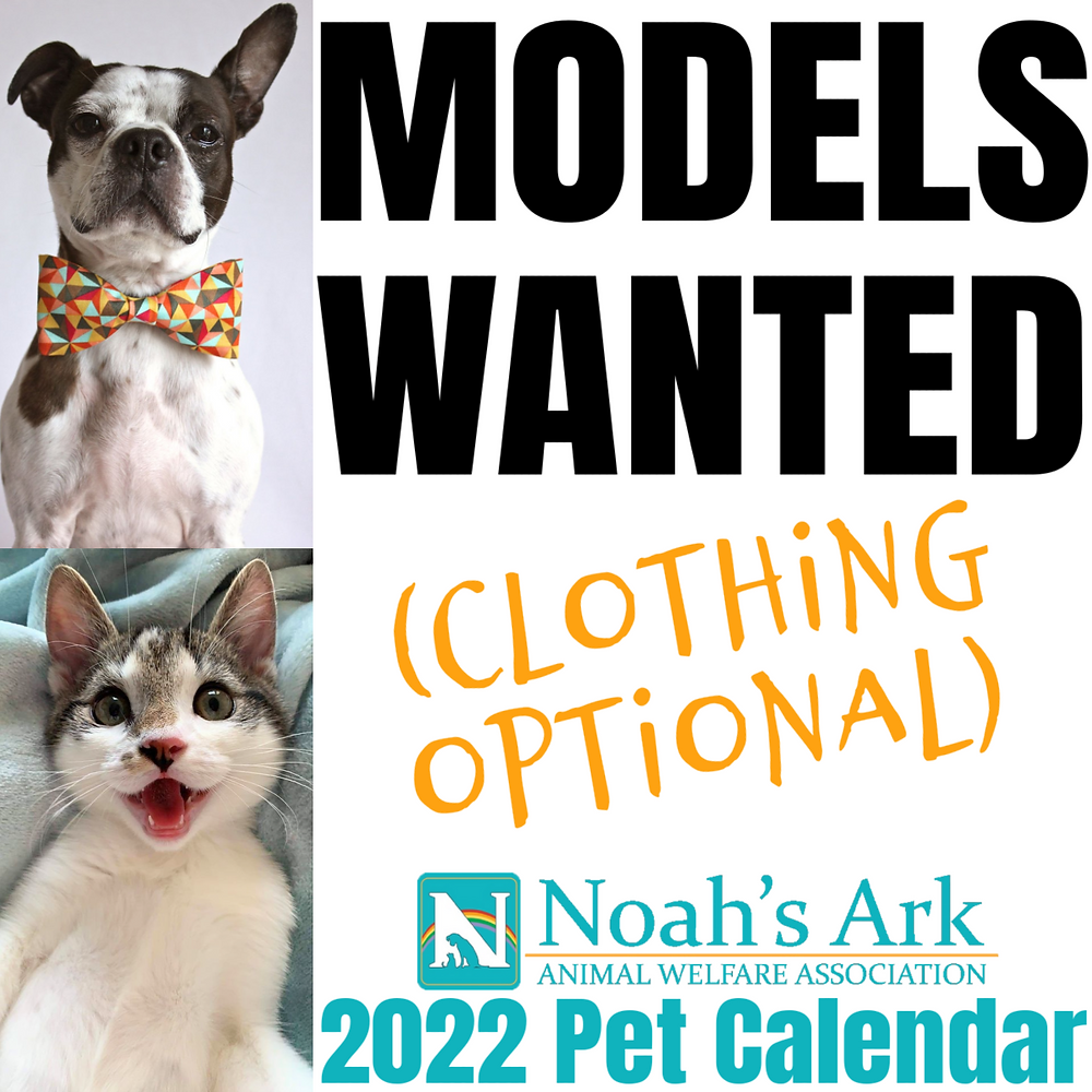 Noah's Ark Pet Photo Calendar