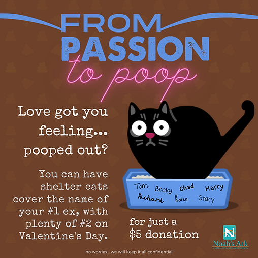 _from passion to poop valentine fundrais