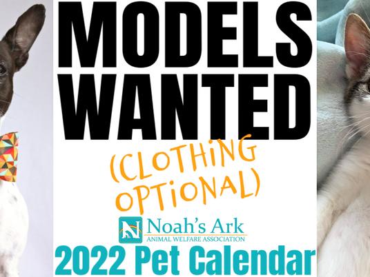 Calling ALL Models - Pet Models that is!