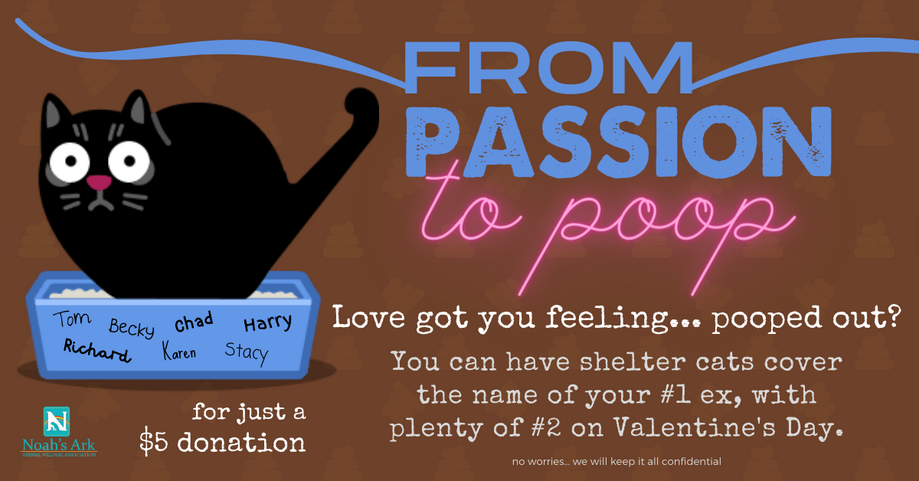 from passion to poop valentine fundraise