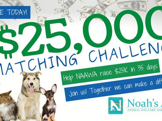 $25K in 35 Days Challenge