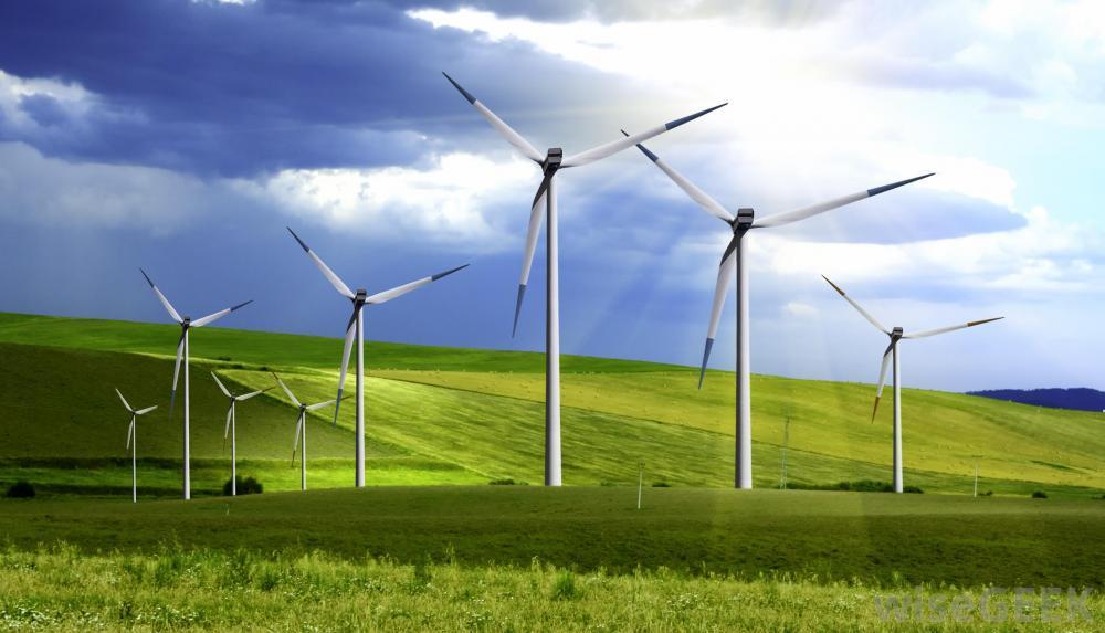 terrestrial-wind-farm1.jpg