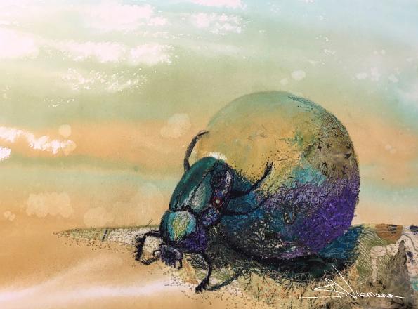 Dungbeetle Artwork