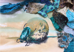 Dungbeetle Fabric Selection