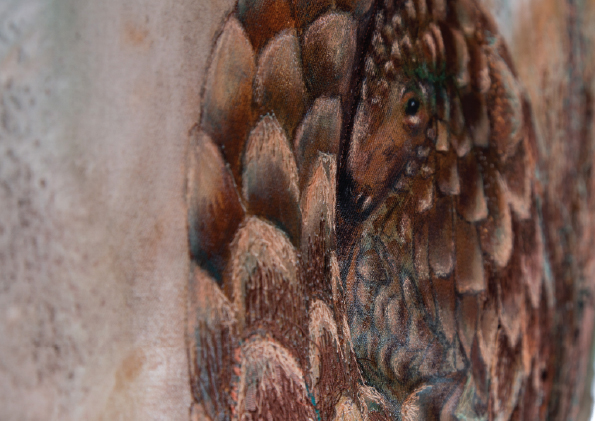 Pangolin Detail
