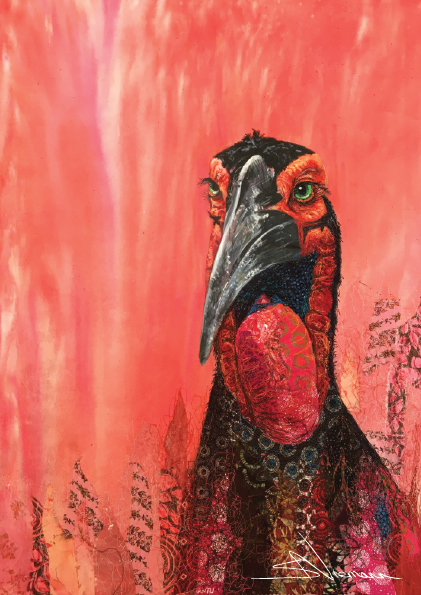 Ground Hornbill Final
