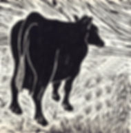 woodcut cow2.jpg