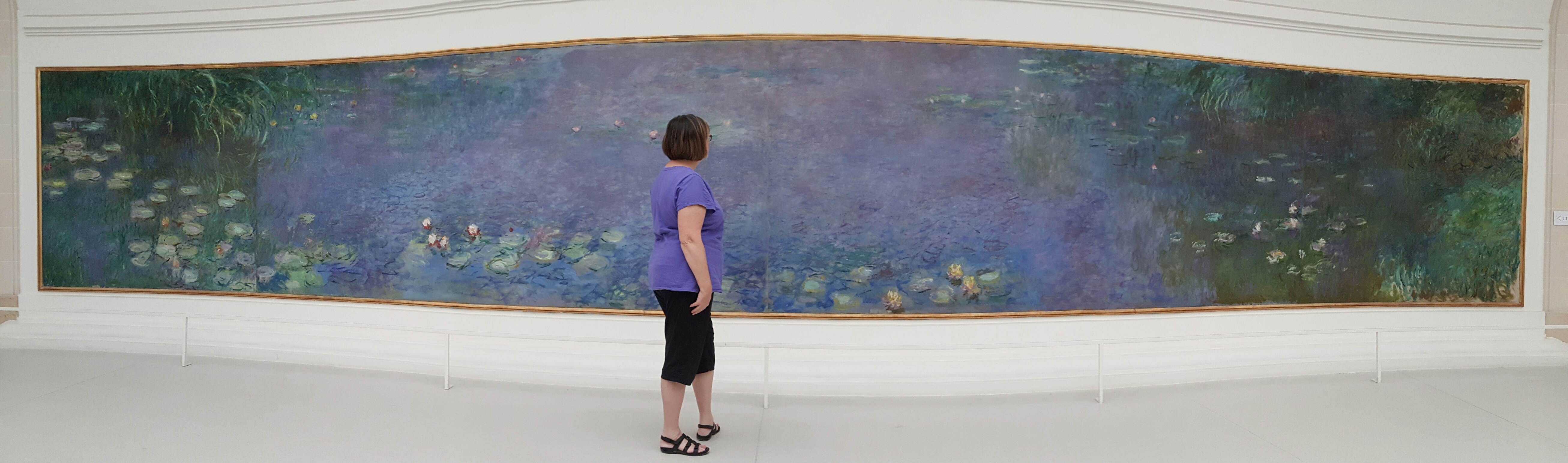 Monet's water lilies painting, Paris