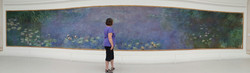 Monet's water lilies painting, Paris