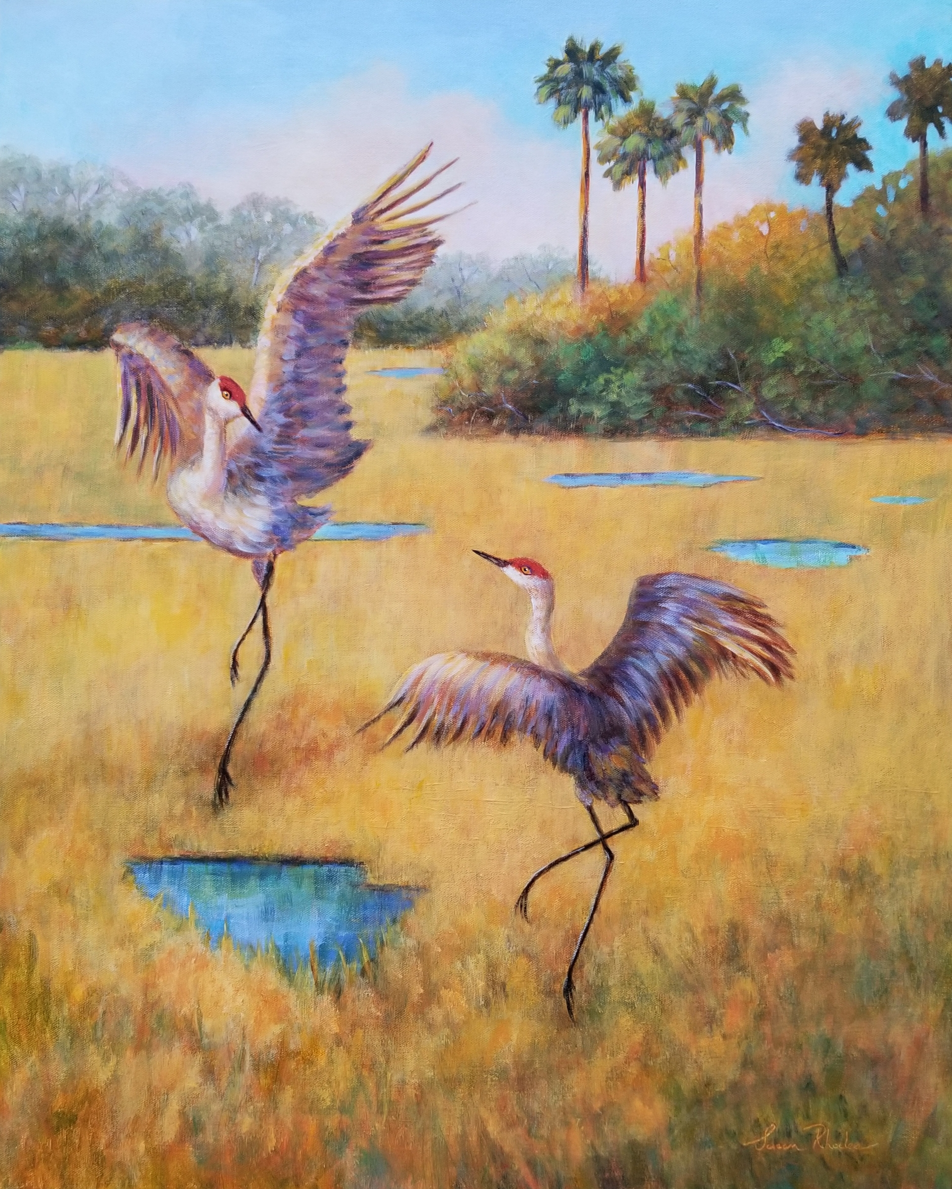 Dancing in the Everglades, Oil