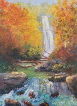 Tom's Creek Falls, NC