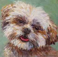 Pet Portrait - Commission