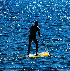 action-beach-fun-236953.jpg
