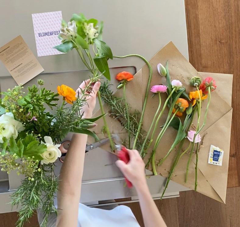 Pflegetipps für Blumen, Blumenpflege, Blumenpflege einfach, Blumenpflege im sommer, Sommerblumen, Blumenpost, nachhaltige Blumen