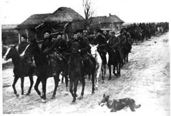 5-я партизанская  бригада