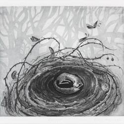 Fox Nest Print by Flora Mclachlan