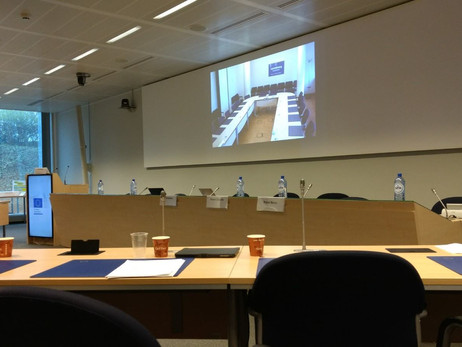 TLF in European Commission  - Horizon 2020