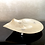 Thumbnail: Antique Shell Butterfly Dish